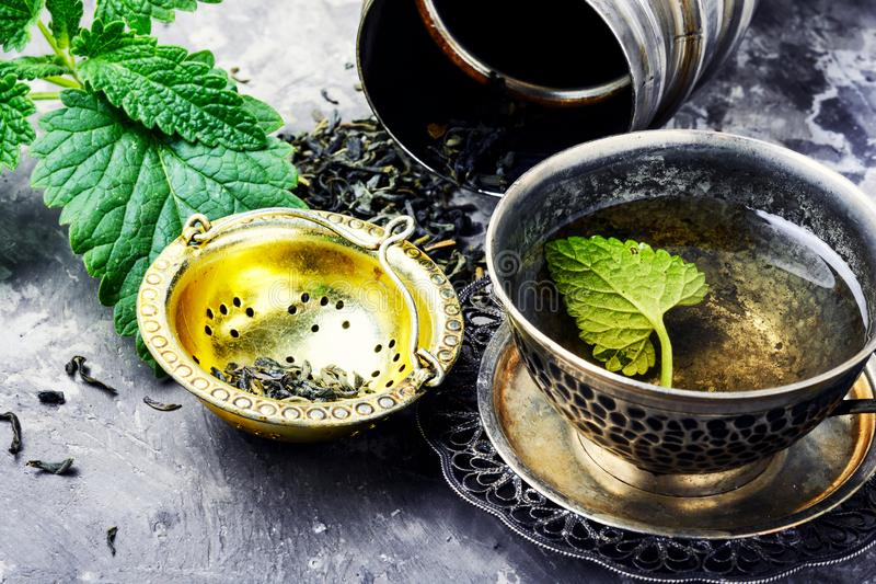 Green melissa herbal tea. Fresh natural green melissa herbal tea in cup royalty free stock photo