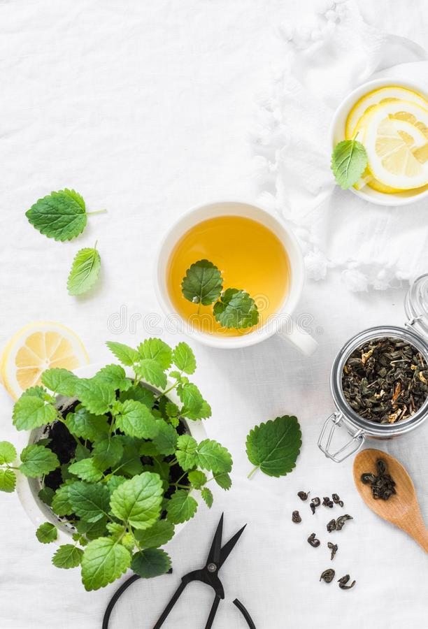 Green melissa lemon tea on light background, top view. Healthy detox drink royalty free stock photo