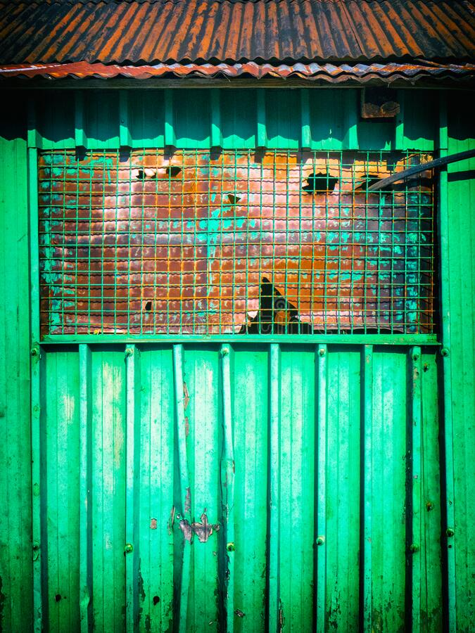 Green metal shack detail. Mesh on a window. stock photography