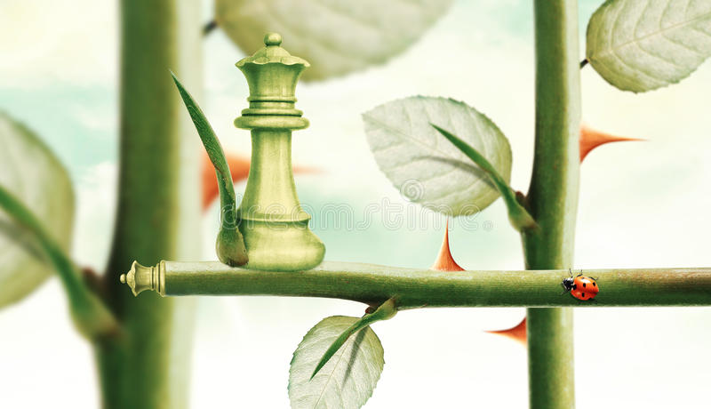 Green Minister Chess. On rose stem, Power and Challenge concept royalty free stock image