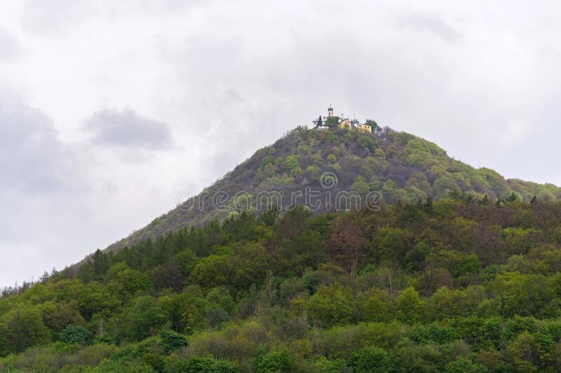 Green mixed forest on Milesovka, highest mountain of Ceske stredohori with lookout tower, Czechia royalty free stock photos