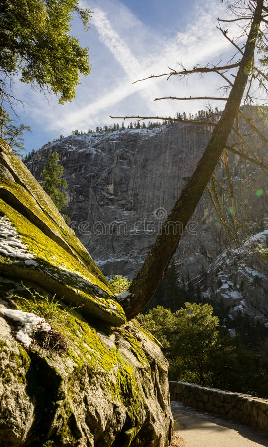 Green moss on mountainside with bright blue skies in Yosemite. Green moss on side of mountain with bright blue skies in Yosemite royalty free stock photos