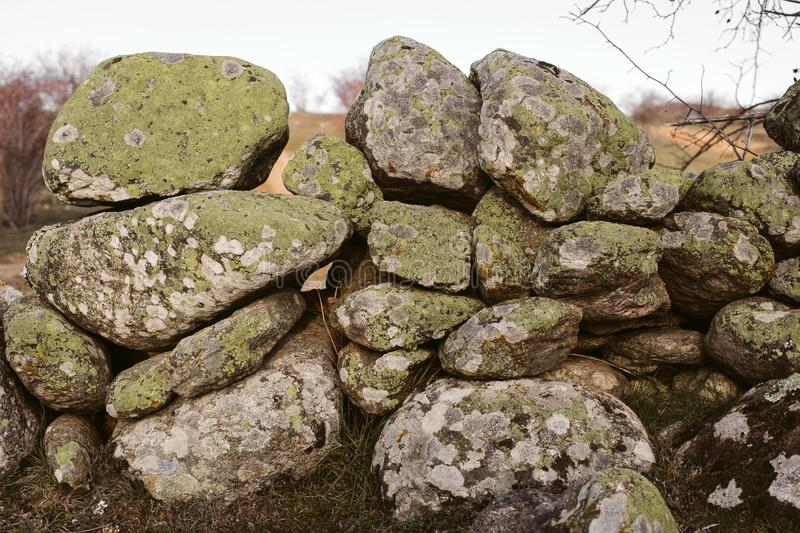 Green moss on stone background and texture. Old stone wall covered with moss. stock image