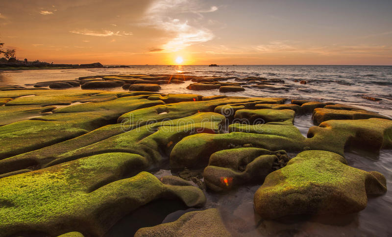 Green moss on unique rock formation and sunset background stock image