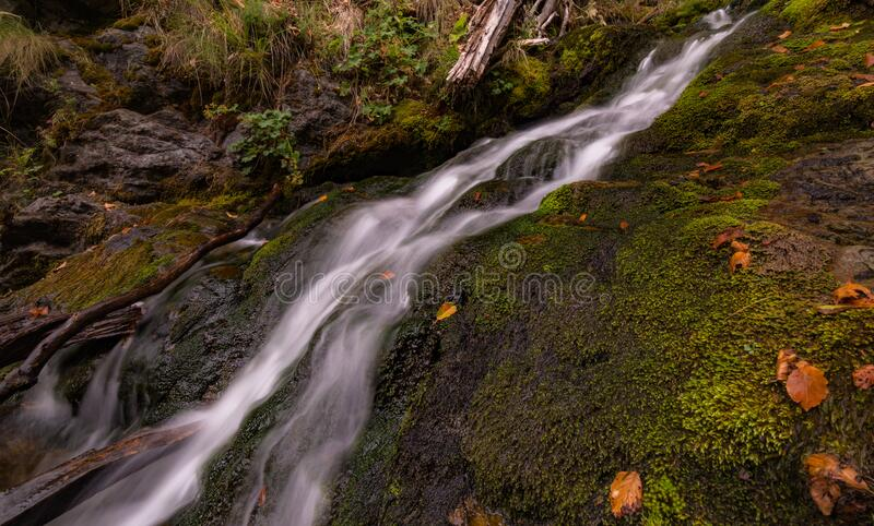 Green Mossy Rock Near on Waterfalls royalty free stock image