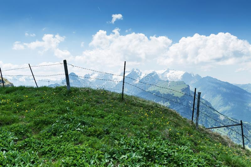 Green mountain meadow in front of barbed wire fence and view to royalty free stock photo