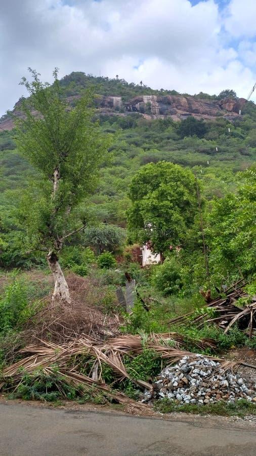 Green mountain. Near erode bavani stock photo