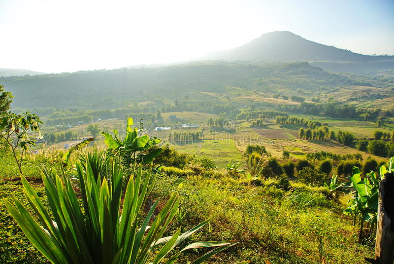 Green mountain stock photography