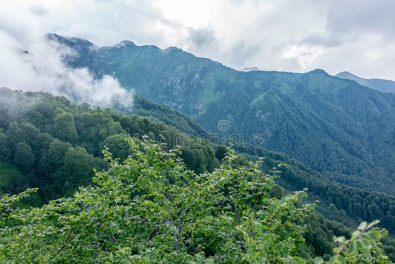Green mountain slope in fog and Rocky Ridge behind it. Green mountain slope forest in fog and Rocky Ridge behind it. Environmental Protection. Travel background royalty free stock photography