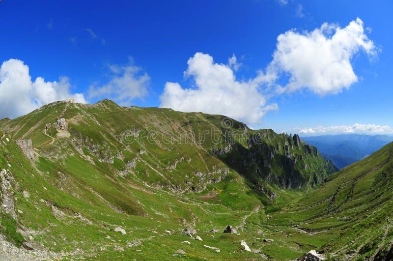 Green mountain valley, Valea Cerbului - Bucegi. Green valley on Bucegi mountains, called Valea Cerbului, descending from the plateau royalty free stock image