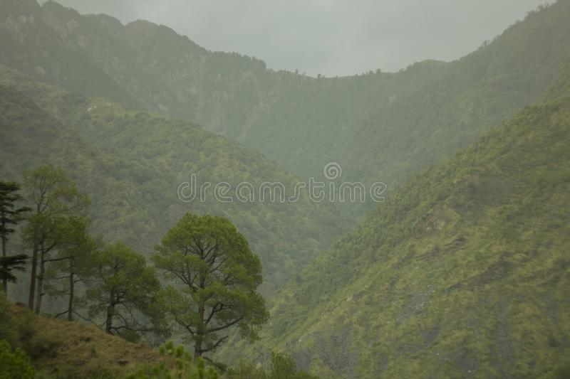 Green mountains valley in fog. The green mountains valley in fog royalty free stock photos