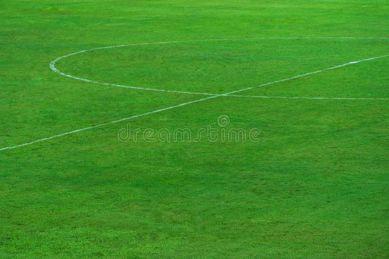 Green natural grass of football or soccer field with part of center round white line for sport background royalty free stock photos