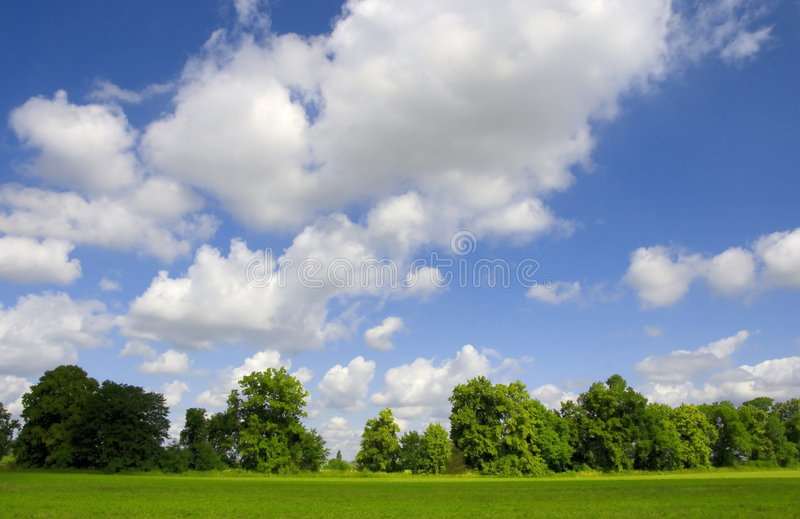 Green nature stock photography