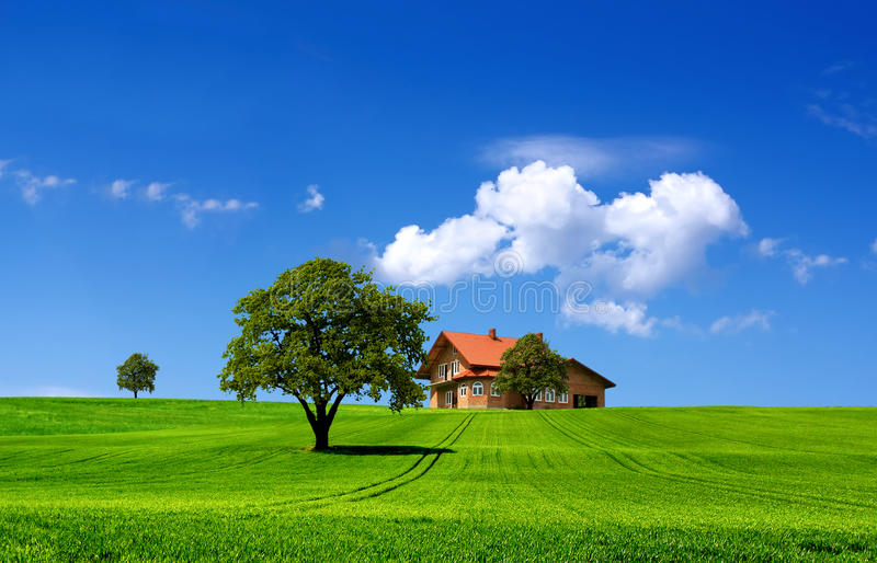 Green nature landscape royalty free stock photos