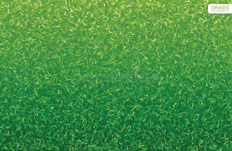 grass texture vector stock illustrations 32 880 grass texture vector stock illustrations vectors clipart dreamstime grass texture vector stock