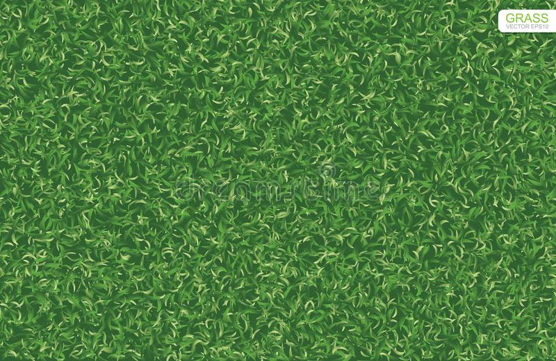 Green nature lawn grass texture and pattern background. Vector. Green nature lawn grass texture and pattern for background. Vector illustration vector illustration