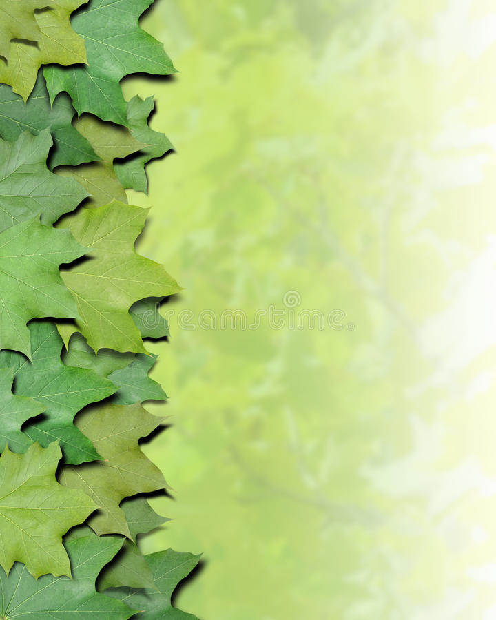 Download Green Nature Leaves Border stock image. Image of blurred - 17096199