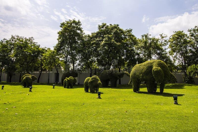 Green, Nature, Tree, Grass Free Public Domain Cc0 Image