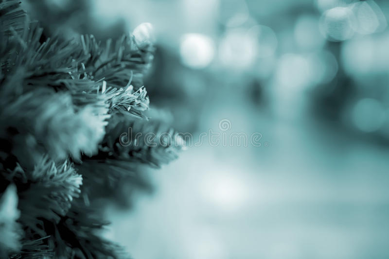 Green needles on spruce, pine branches. Abstract blurred holiday toned background with Bokeh. Selective focus. Winter royalty free stock photos