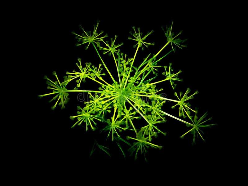 Green Neon Dill fotografia stock libera da diritti