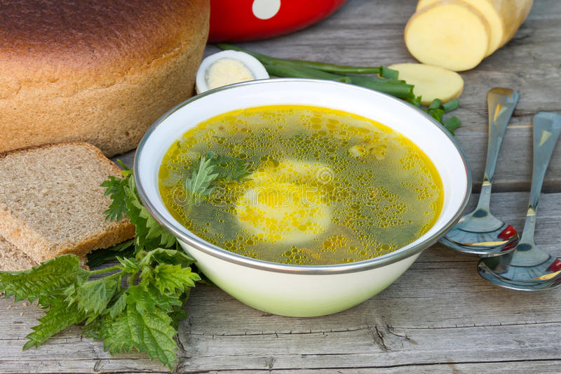 Green nettle soup stock images