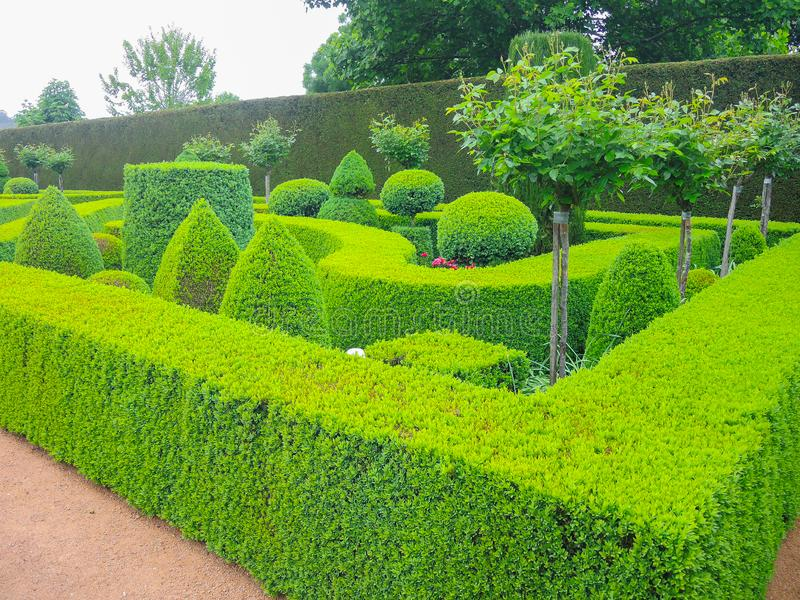 A Green nice garden with hedges cut very accurately. Green nice garden with hedges cut very accurately stock image