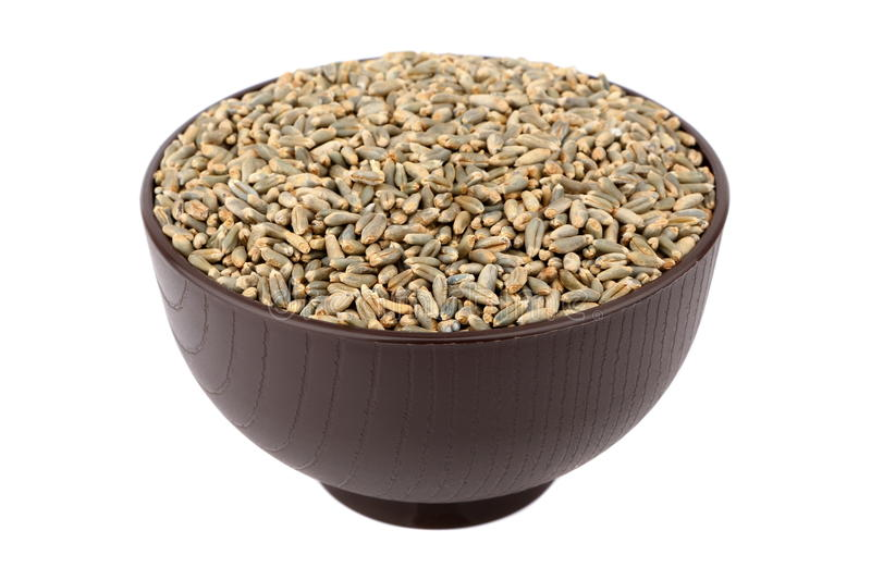 Download Green oat grain stock image. Image of isolated, food - 29924451