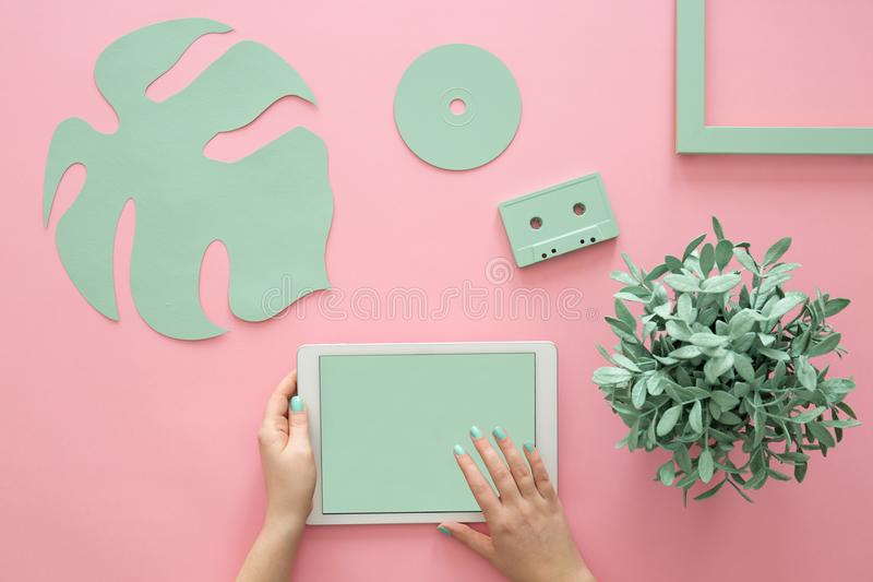 Green objects on rose background stock image