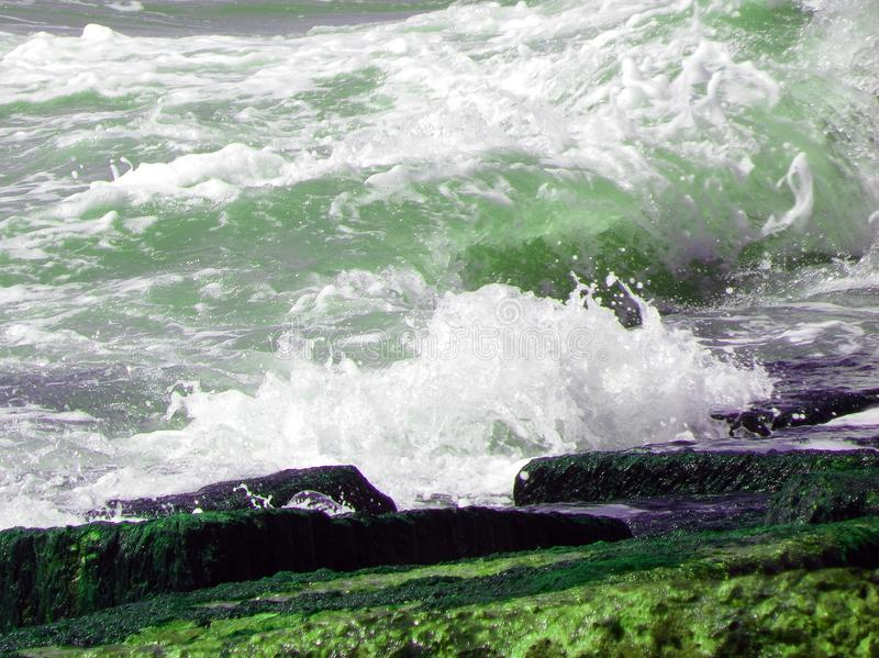 Green ocean waves. White waves colliding with algae covered blocks royalty free stock photos