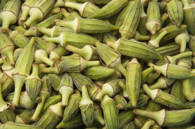 Download Green Okra Crop Texture stock image. Image of agriculture - 20429955