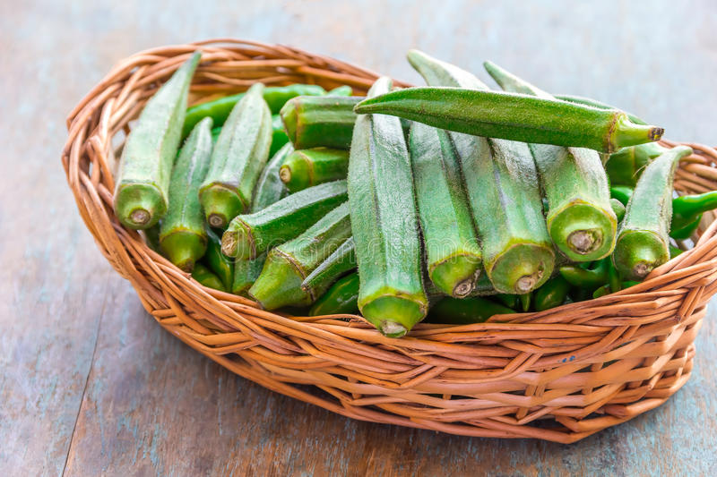 Green Okra. Fresh and organic okra on a basket. Green okra for cooking; popular healthy vegetable royalty free stock images