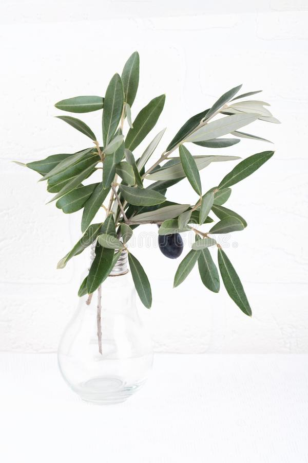 Green olive branches in glass vase on a white brick wall background. Wall mockup. Minimal home decor. Simple modern interior stock photo