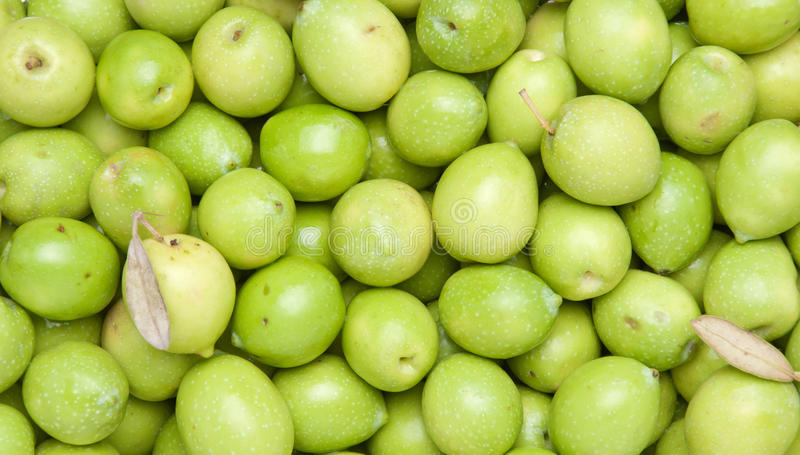 Download Green Olives Stock Photo - Image: 21160820