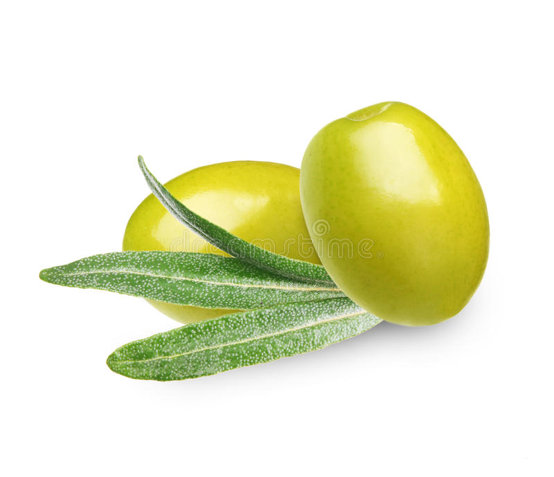 Download Green olives with leaves stock image. Image of branch - 34513433