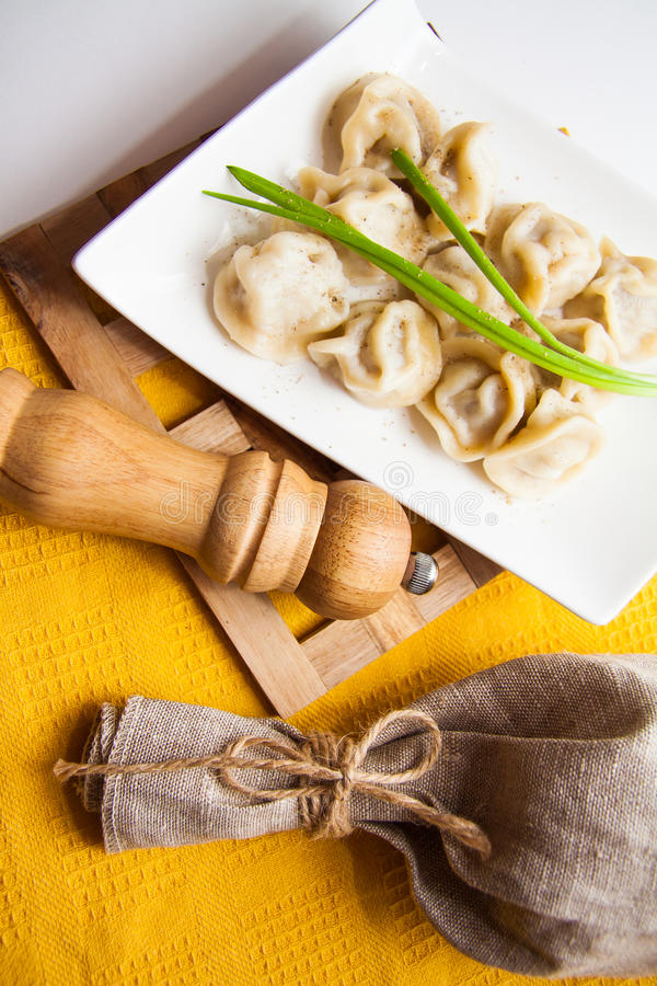 Green onion and dumplings. Traditional russian dumplings with meat and onion royalty free stock photography