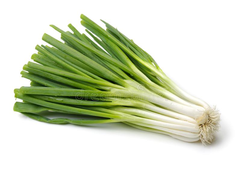 Green onion. Isolated on white background stock photo