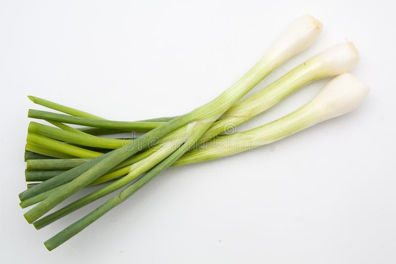 Green onion isolated. On the white background royalty free stock photography