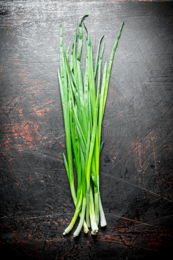 Green onion for salad. On dark rustic background royalty free stock images