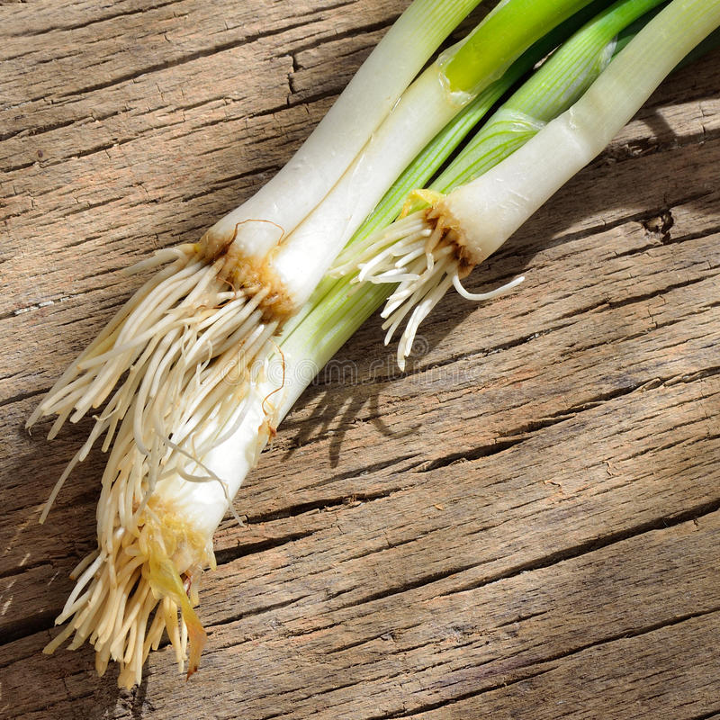 Download Green, Onion On A Wood Table Stock Photo - Image: 30182832