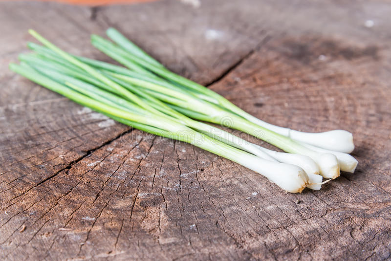 Green Onion on wood background stock images