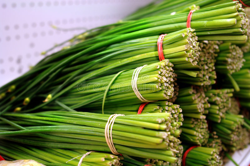 Download Green onions stock image. Image of greengrocer, grocery - 1413259
