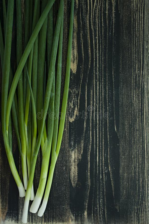 Green onions on a dark wooden background stock image