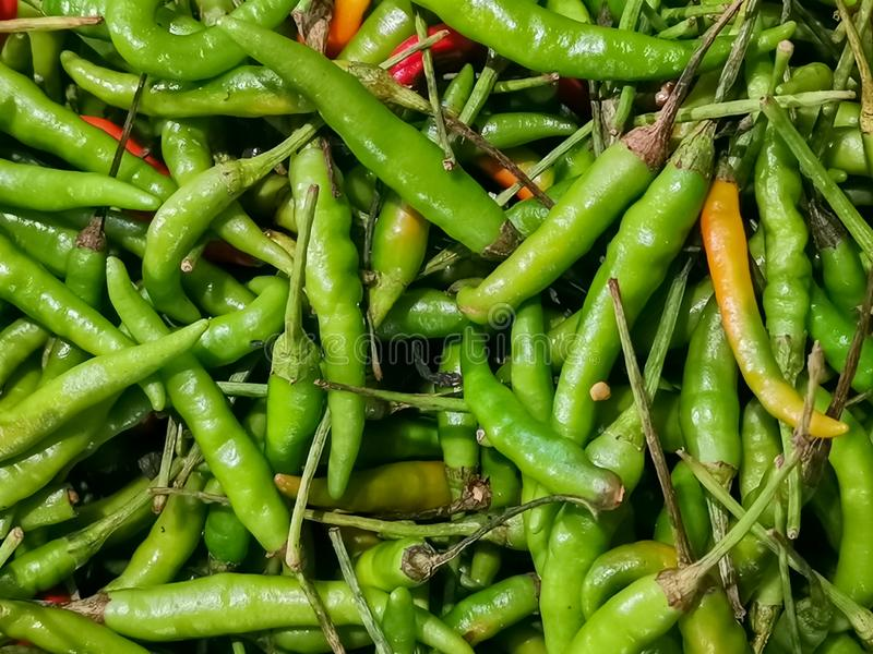 Green and orange chili or peppers for sale in the Vegetable market royalty free stock photos
