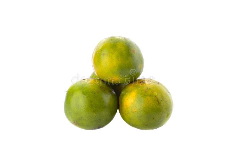 Green Orange fuit on white. royalty free stock photo