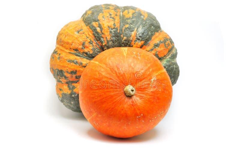 Green and orange pumpkins royalty free stock image