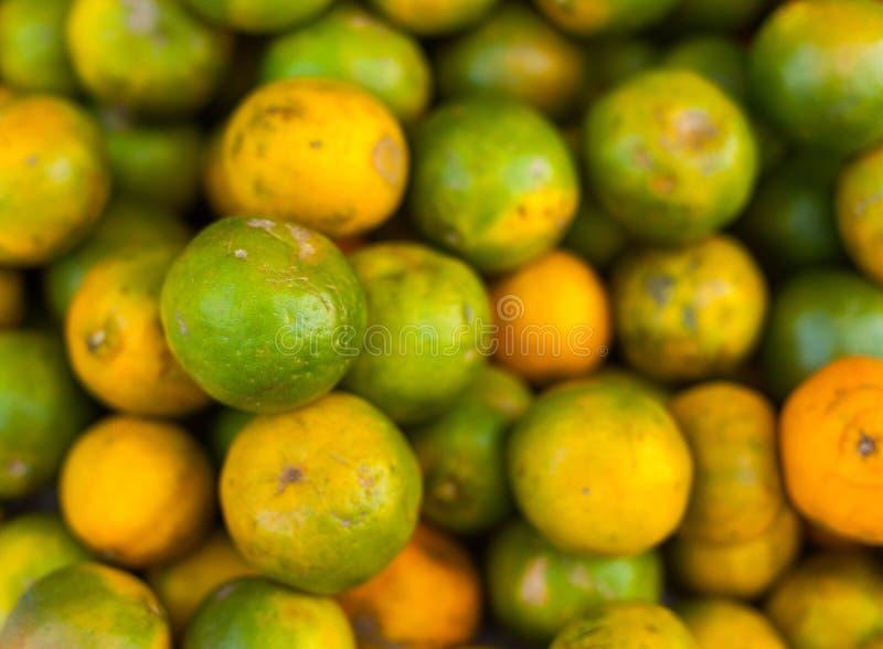 Green oranges stock photography