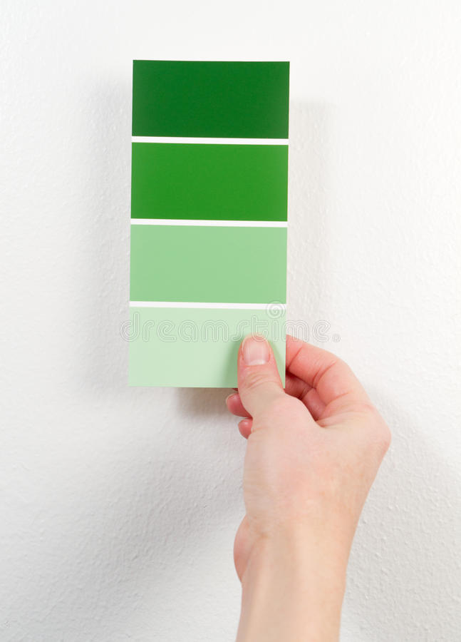 Green paint swatches. A woman holds green paint swatches near a white wall stock image