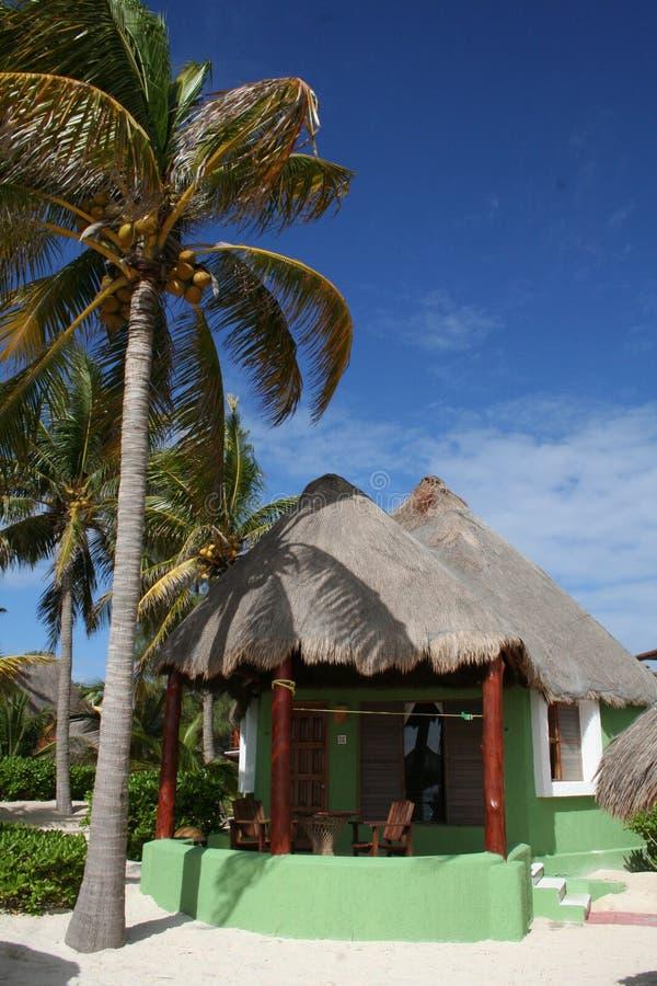Green Palapa in Playa del Carmen - Mexico royalty free stock photography