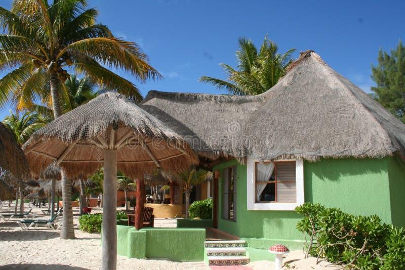 Green Palapa In Playa Del Carmen - Mexico Royalty Free Stock Images