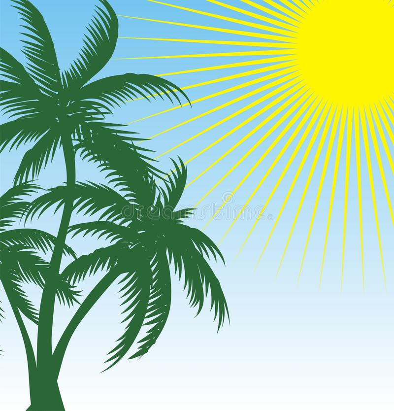 Download Green Palm Stock Images - Image: 12920684